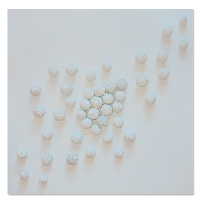 material renaissance semi platano bianco Giusi Loisi